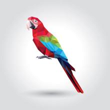 Red Macaw With Green And Blue ...