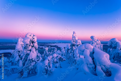 Heavy snow landscape with pastel colors sky. Photo from Sotkamo, Finland.