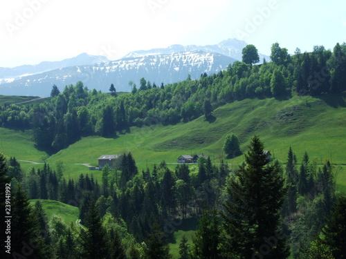 Foto auf Gartenposter Hugel Pastures and hills of the Zürchersmühle village - Canton of Appenzell Ausserrhoden, Switzerland