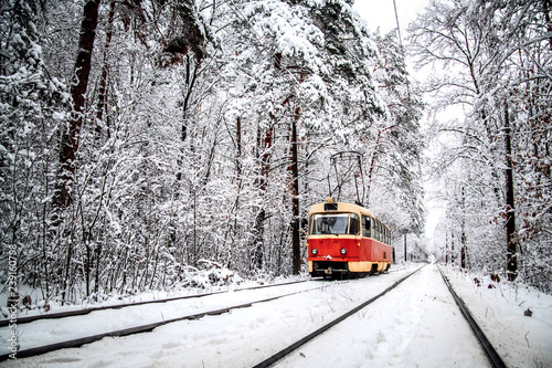 Tram rides through the snow-covered forest.