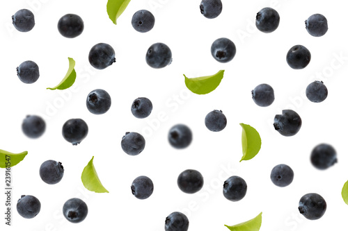 fly blueberries and leaves isolated on white