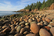 The Rugged Coast Of Acadia Nat...