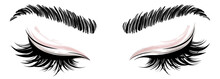 Illustration Of Eye Makeup And...