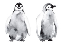 Watercolor Clipart With Pengui...