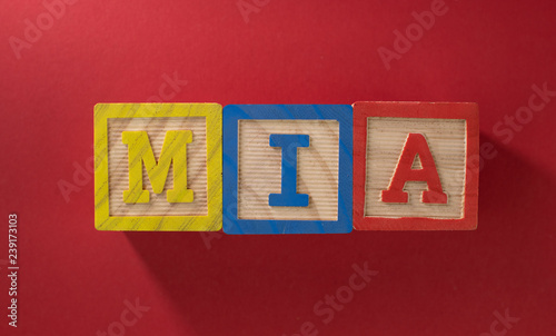 Photo  Name Mia made with wooden blocks