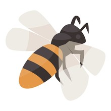 Bee Icon. Isometric Of Bee Vector Icon For Web Design Isolated On White Background