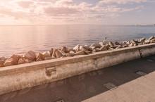 Coastline With Concrete Wave Breaker