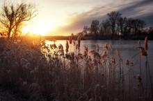 Beautiful Winter Landscape. Th...