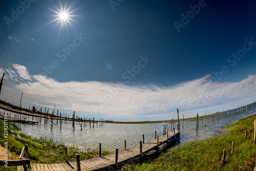 Fotografie, Obraz  Waterway for boats to dock with green grass and a special sun star in the shy