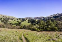 Hiking Trail Through The Green...