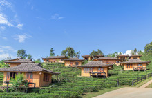Landscape View Of Ban Rak Thai Chinese Community Village Is Chinese Kuomintang Refugees Who Escaped The Communists In 1949 In Pai, Mae Hong Son, Thailand With Tea Plantation Under Blue Sky