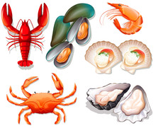Set Of Seafood On White Backgr...