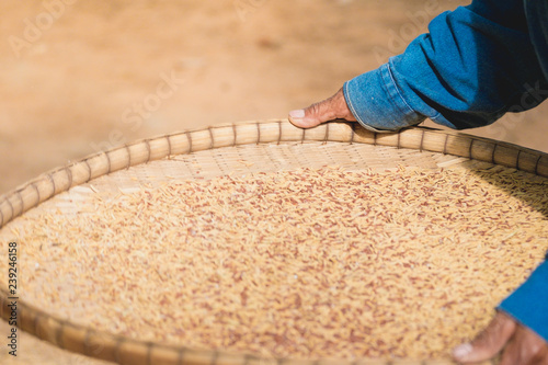 Foto  Old Thai farmer winnowing rice.