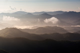 Fog covering the mountain  - 239262541