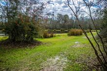 Beautiful Evangeline Pond In St. Martinville, Louisiana