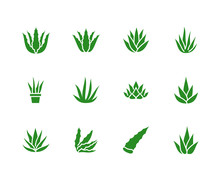 Aloe Vera Flat Glyph Icons. Succulent, Tropical Plant Vector Illustrations, Signs For Organic Food, Cosmetic. Solid Silhouette Pixel Perfect 64x64