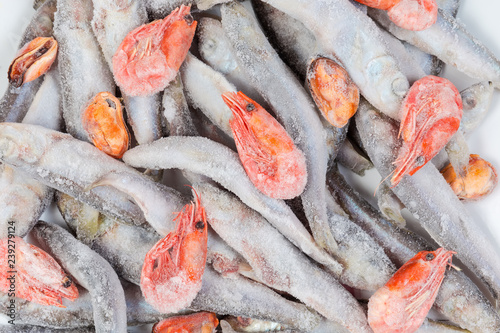 Background of frozen various seafoods in icy glaze