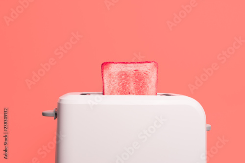 Living Coral color of the Year 2019. Creative concept Healthy fashion food of breakfast. Toast in a toaster on a pink background. Gradient color palette.
