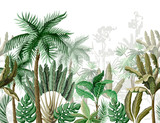 Seamless border with tropical tree such as palm, banana. Vector. - 239314995