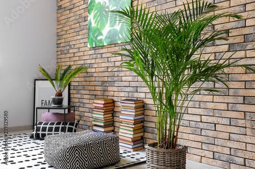 Decorative Areca palm in interior of room Wallpaper Mural