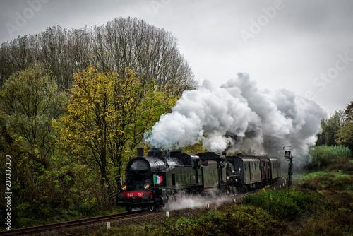 Fototapeta treno di Natale