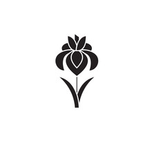 Iris Black Vector Concept Icon. Iris Flat Illustration, Sign, Symbol