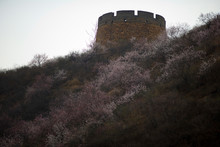 Ancient Tower Sitting Atop A Hill With Wildflowers Growing On It.