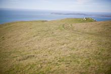 Grassy Paddock Along A Coastline.