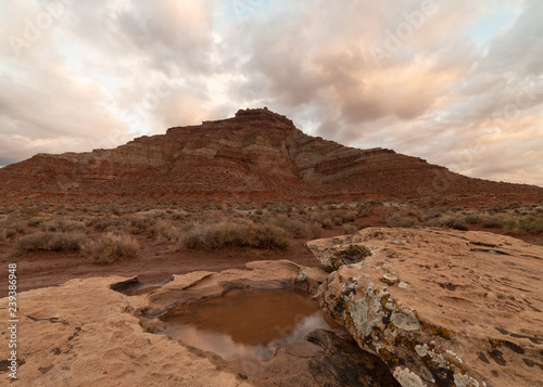 Fotografie, Obraz  Early morning light makes the clouds glow softly after a winter rain has left a pool of water on top of a lichen covered boulder below Gooseberry mesa in Southern Utah