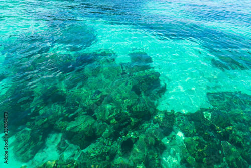 Fotografie, Obraz  The clear water of the tropical sea shimmers under sunlight of emerald color