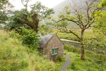 Old Cottage Into The Wild In I...