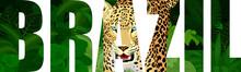 Vector Brazil Illustration With Jaguar