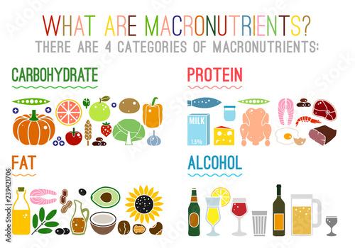 Main food groups macronutrients Canvas Print