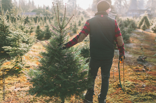 Fototapeta  A man at a Christmas tree farm standing with the tree he cut down
