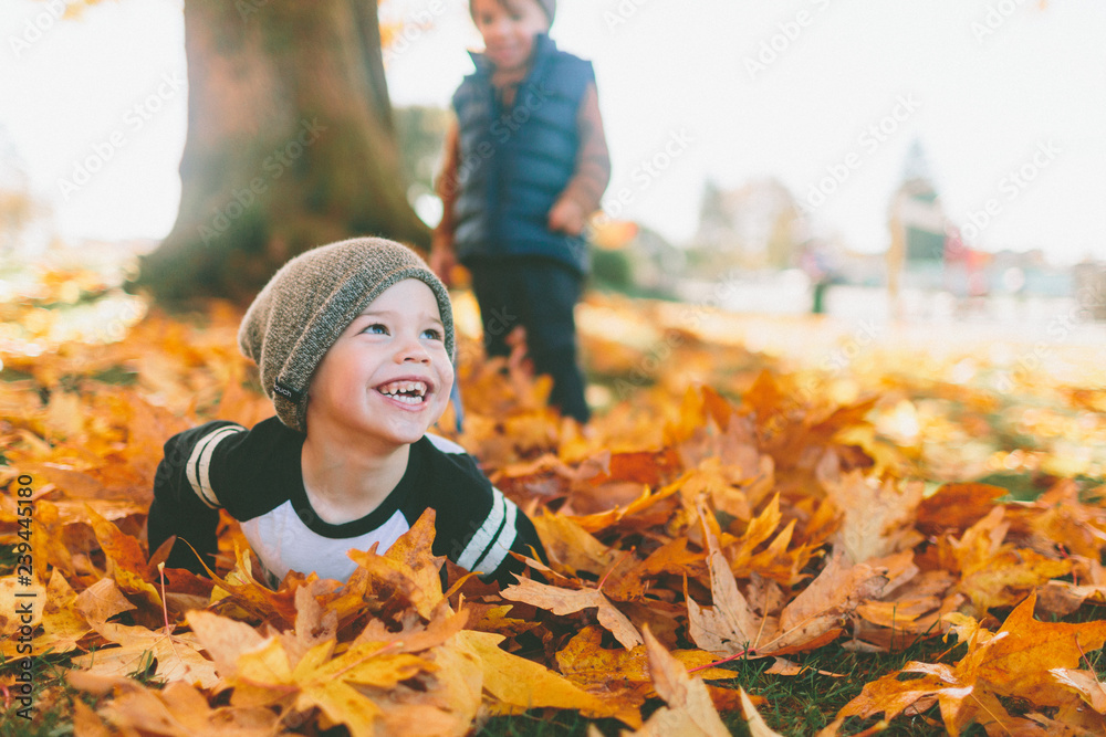 Fototapety, obrazy: A little boy smiling in a pile of leaves.