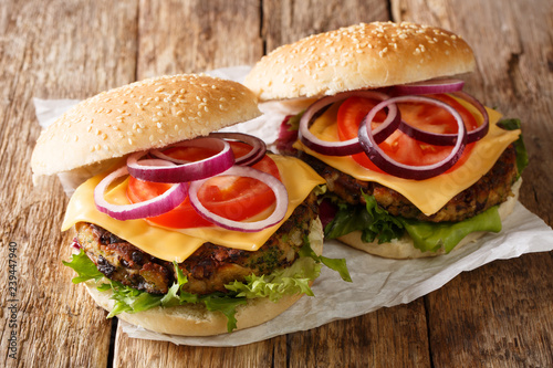 Delicious vegetable hamburgers with vegetarian patty and cheddar cheese close-up. horizontal