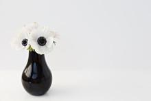 Flower In Black Vase On White Background