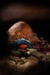 Cock Pheasant II