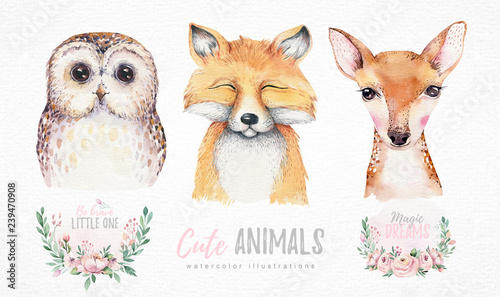 Canvas Prints Owls cartoon Watercolor set of forest cartoon isolated cute baby fox, deer and owl animal with flowers. Nursery woodland illustration. Bohemian boho drawing for nursery poster, pattern