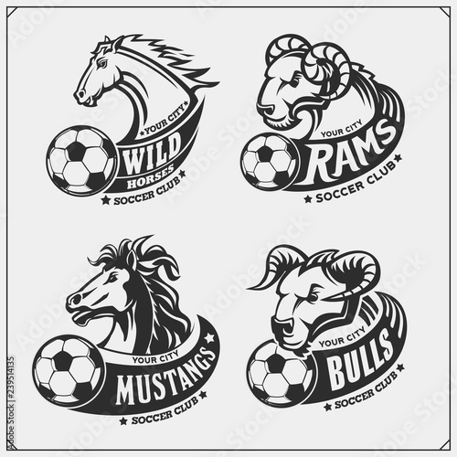 Fototapeta Set of soccer emblems, badges, logos and labels with bull, horse and ram. Print design for t-shirts. obraz