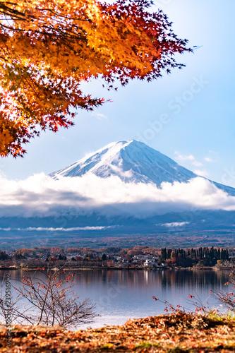 Fototapety, obrazy: Mountain Fuji in autumn at Lake kawaguchiko in japan.