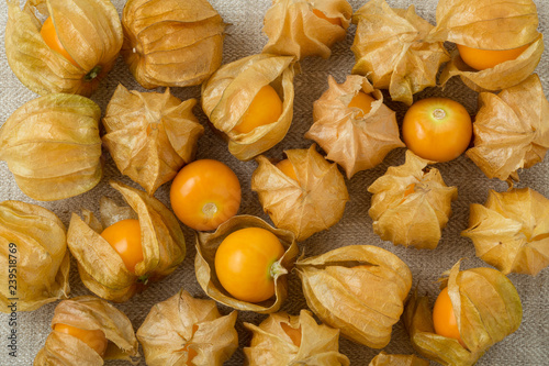 Golden berries background