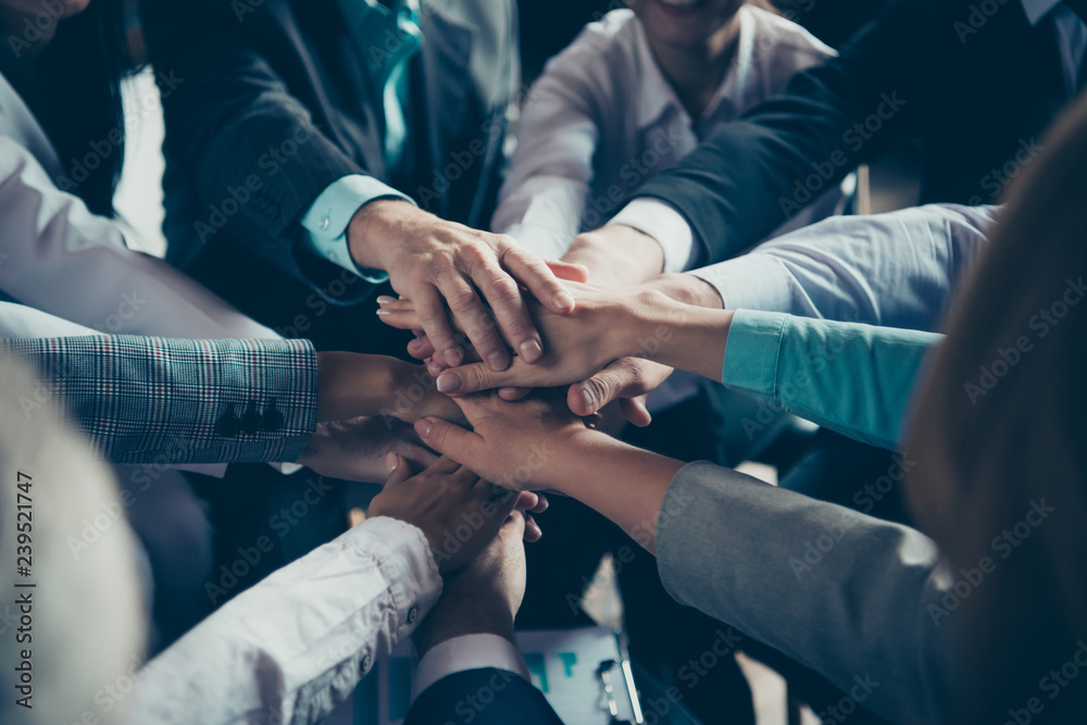 Fototapeta Cropped close-up of hands elegant classy chic stylish trendy professional business people sharks ceo boss chief company management development at work place station