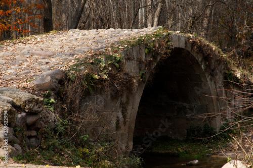 Aluminium Prints Mills historic stone bridge in the forest