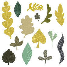 Hand Drawn Leaf Clipart With Pencil Texture