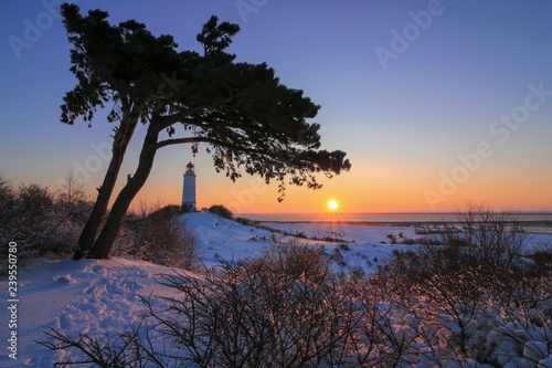 Foto op Plexiglas Chocoladebruin beautiful view to the romantic winter landscape on the gorgeous German island Hiddensee by the Baltice Sea