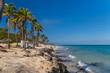 Palm trees on a rocky beach. Cuba, the Caribbean