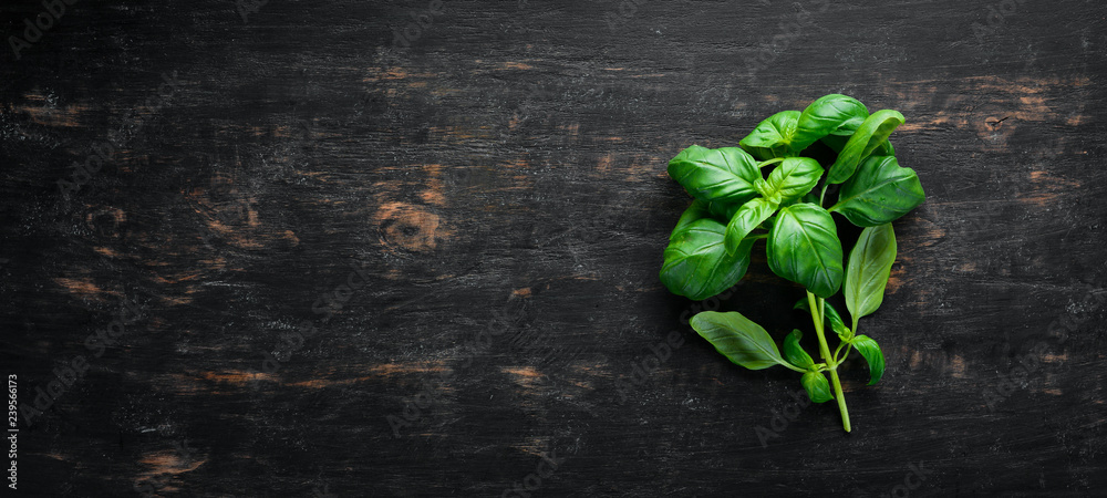Fototapety, obrazy: Fresh basil and spices. On a black wooden background. Top view. Free copy space.