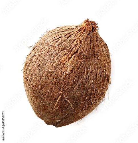 coconut shell isolated on white background, top view