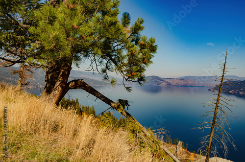 Valokuvatapetti South Okanagan Lake view from The Valley of the Sun